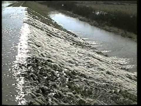 Tiszai árvíz (2001)