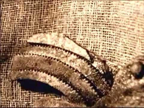 Ókori találmányok – Számítások