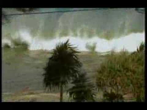 Cunami (2004)