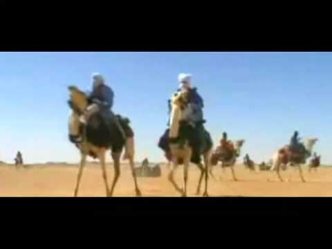 Élet a sivatagban