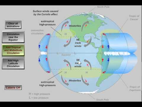Nagy földi légkörzés