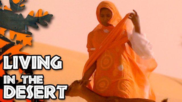 Élet a sivatagban (2)